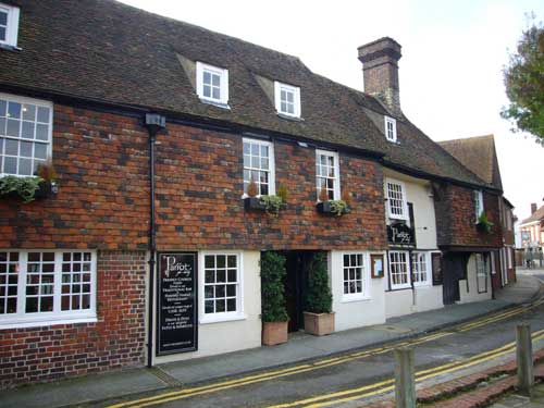 Picture 1. Parrot, Canterbury, Kent