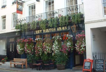 Picture 1. The Wilton Arms, Belgravia, Central London