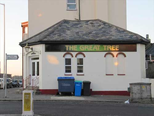 Picture 1. The Great Tree, Ramsgate, Kent