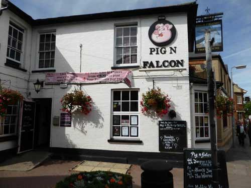 Picture 1. Pig n Falcon, St Neots, Cambridgeshire