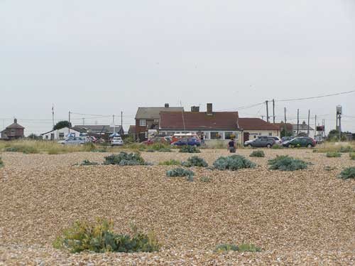 Picture 1. The Pilot, Dungeness, Kent