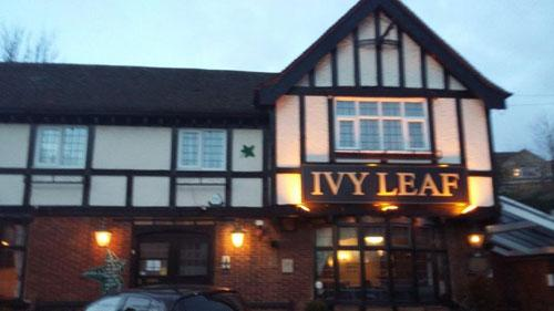 Picture 1. Ivy Leaf, Dartford, Kent